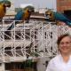 Sonia posa junto a las guacamayas, aves típicas de estos lugares